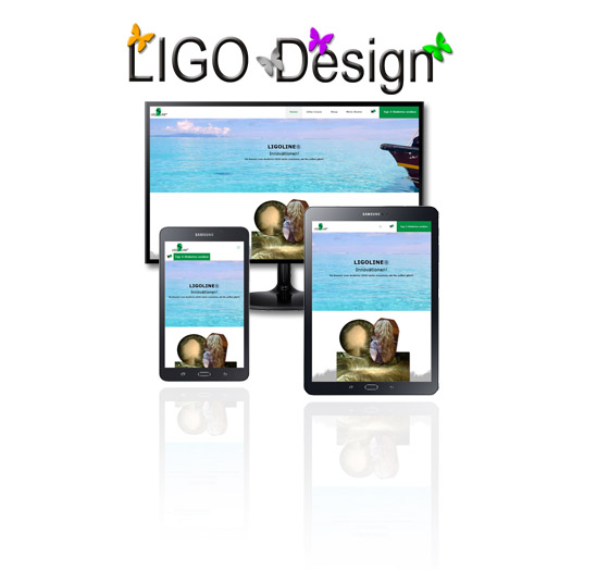 ligo_design_professionelle_website_webdesign