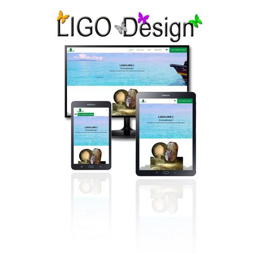 ligo_design_professionelle_website_webdesign